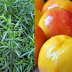 peaches w tarragon