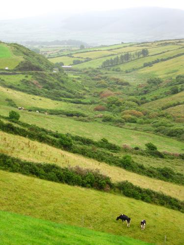 dingle valley ireland