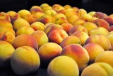 freezing peaches the easy way