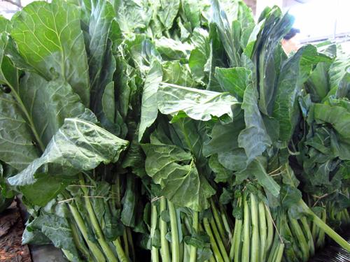 mustard greens and kale at sweet auburn curb market in atlanta