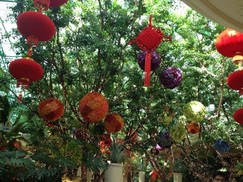 las vegas 6 wynn chinese new year flowers