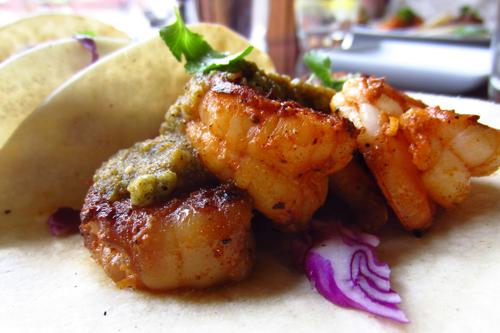 black pearl denver shrimp tacos 1
