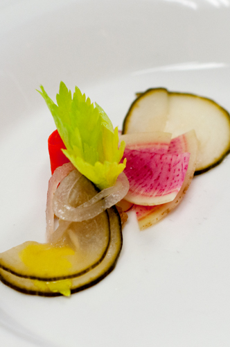 opus radish garnish