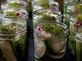 cucumbers with spices to pickle