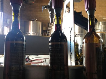 infinite monkey theorem bottling
