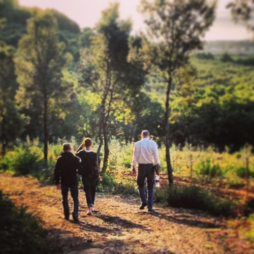 7 walk in the tuscan hills