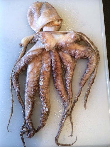 a taste of wa octopus whole