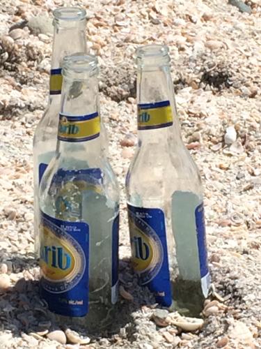 4 st barths shell beach