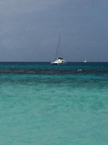 6 sandy island