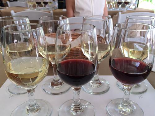 aspen food and wine classic wine tasting