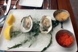 stoic and genuine denver oysters-1