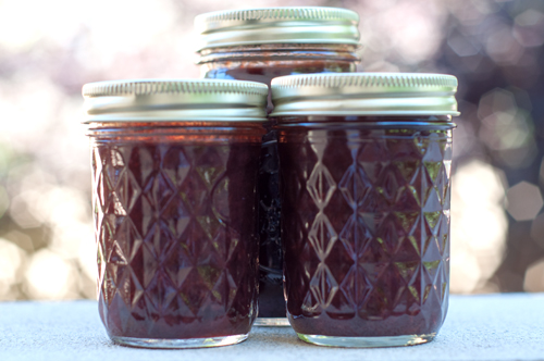 plum jalapeno chutney 1-1