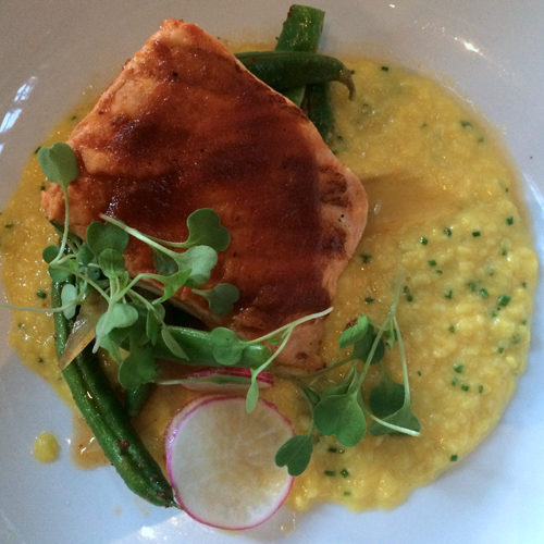 acorn skuna bay salmon creamed corn-1