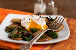 poached egg over swiss chard and fingerling hash-1