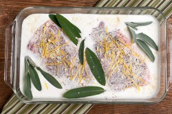 pork lemon garlic sage cream sauce 1-1