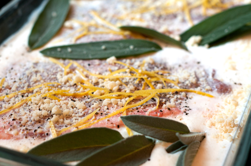 pork lemon garlic sage cream sauce-1