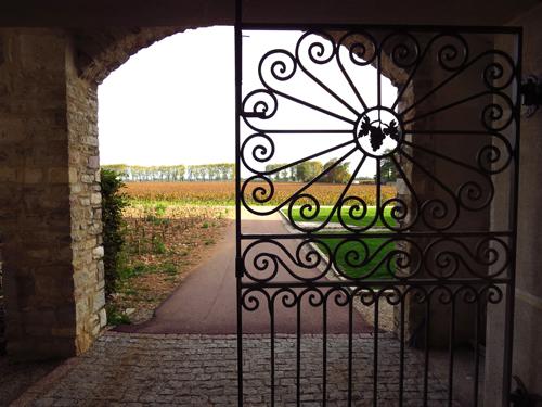 burgundy france IMG_1590