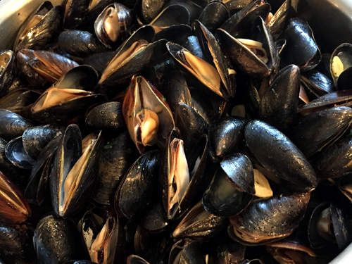 new years eve 2015 mussels-1