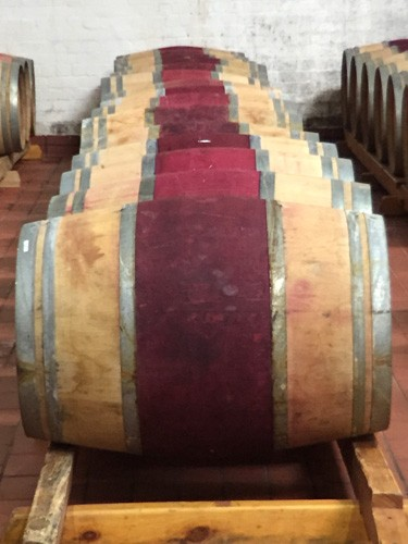 south-africa-winelands-IMG_2382