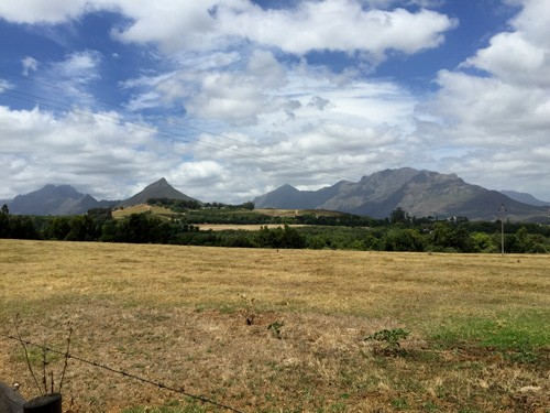 south-africa-winelands-IMG_2417