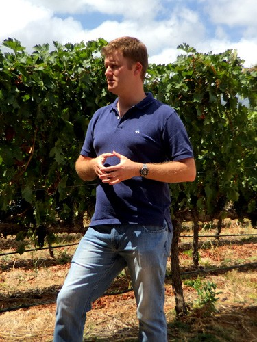 south-africa-winelands-IMG_2424