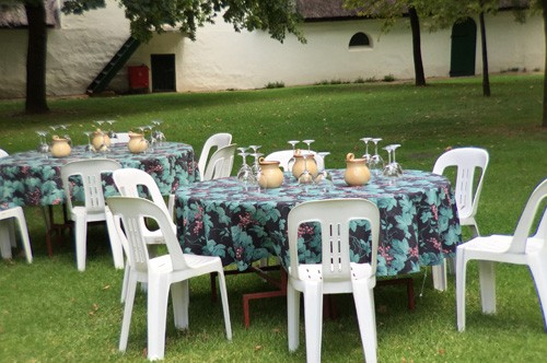 south-africa-winelands-IMG_2427