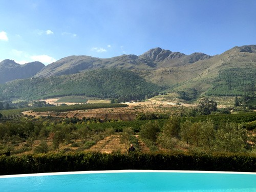 south-africa-winelands-IMG_2453