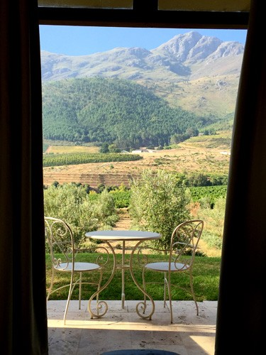 south-africa-winelands-IMG_2460