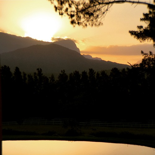 south-africa-winelands-IMG_2476