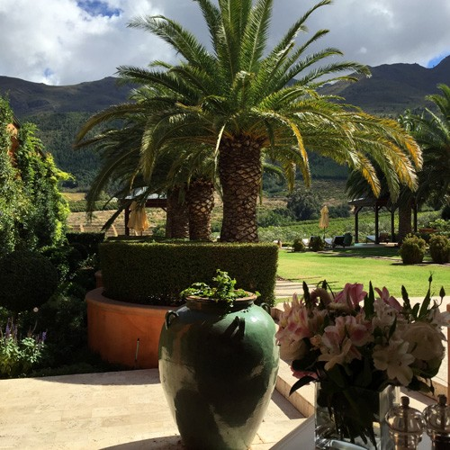 south-africa-winelands-IMG_2478
