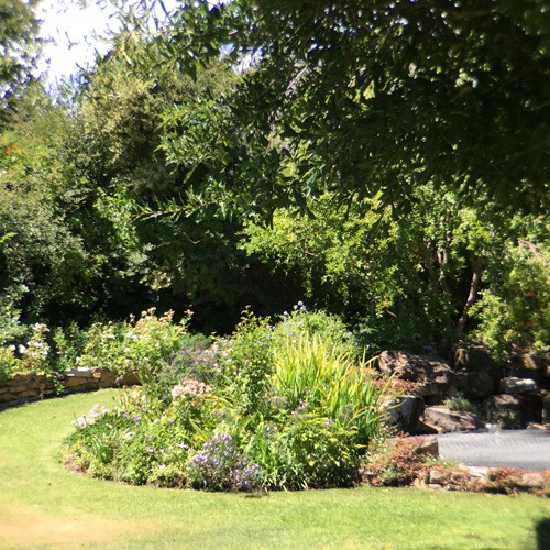 south-africa-winelands-IMG_2487