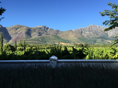 south-africa-winelands-IMG_2494