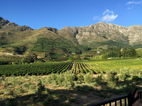 south-africa-winelands-IMG_2505