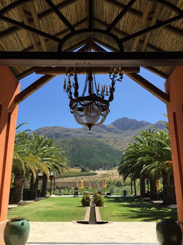 south-africa-winelands-IMG_2538