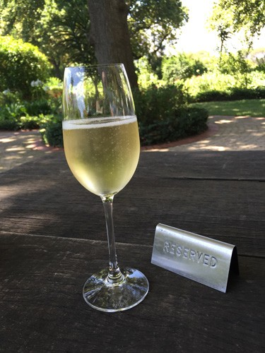 south-africa-winelands-IMG_2550