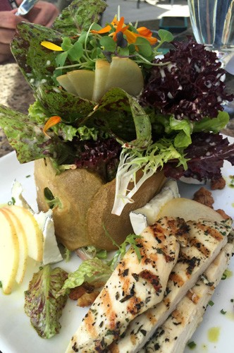 Sonoma-French-Garden-Restaurant-garden-salad-chicken