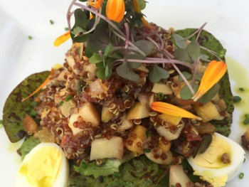 Sonoma-French-Garden-Restaurant-red-quinoa-salad