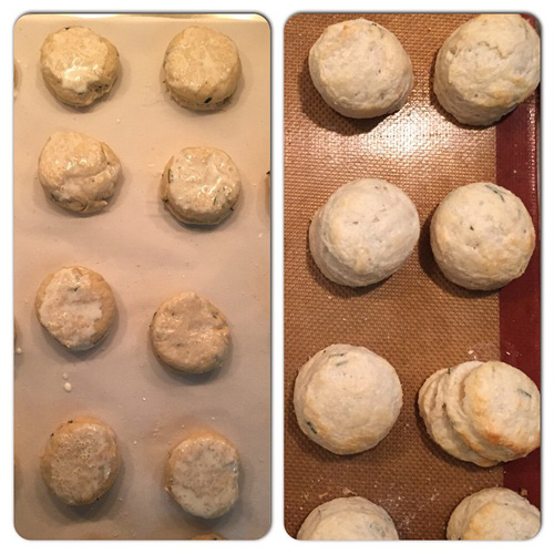 goat-cheese-biscuits