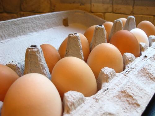 eggs-from-monroe