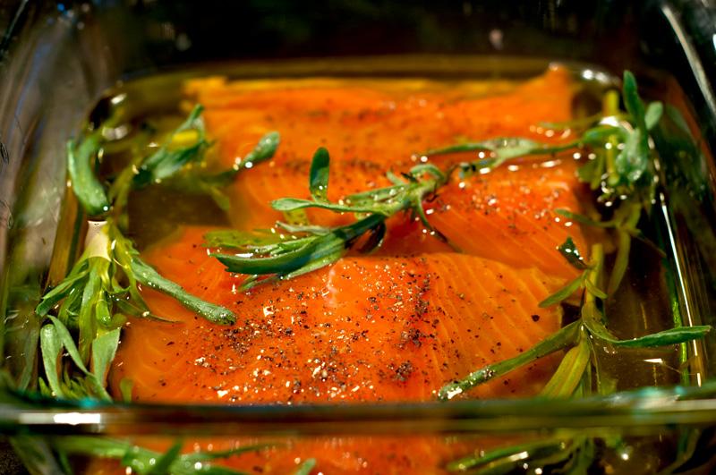 Alaska Direct Salmon