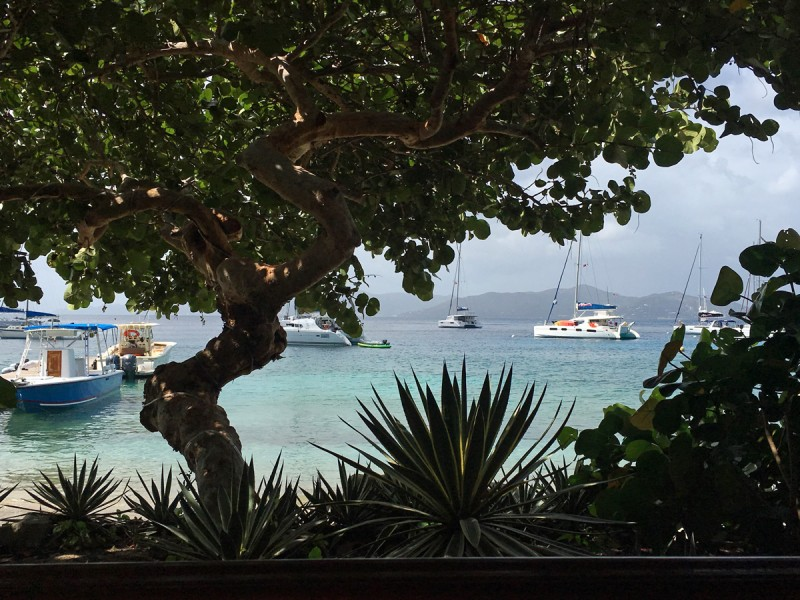 caribbean-bvi-cooper-island