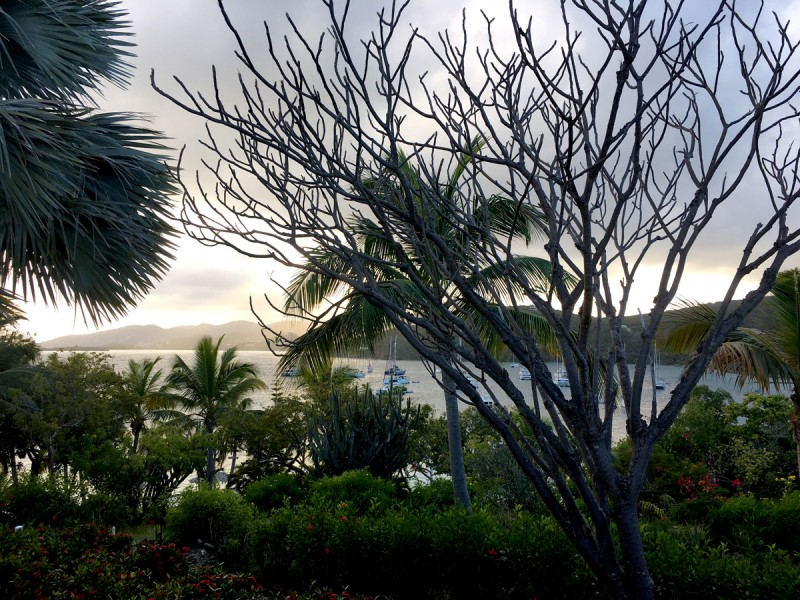 caribbean-bvi-marina-cay-sunset-from-pussers