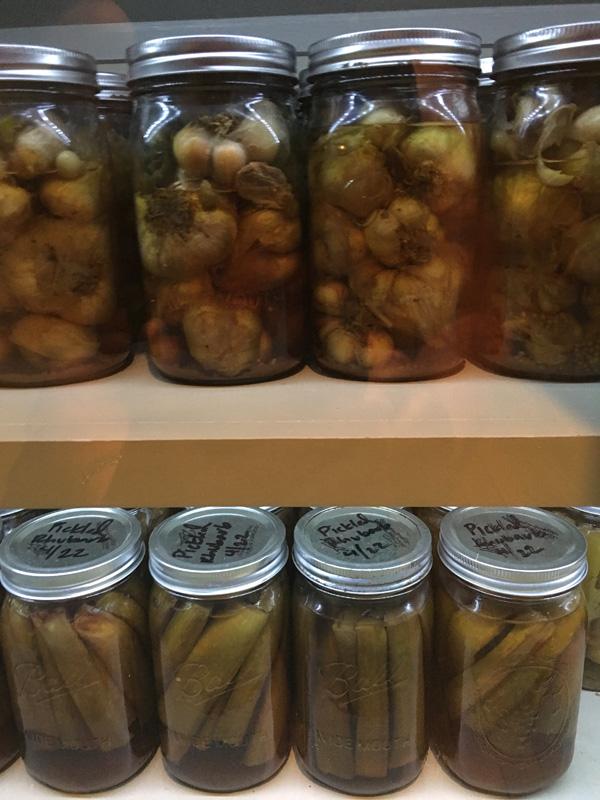 kiawah-24-husk-pickles