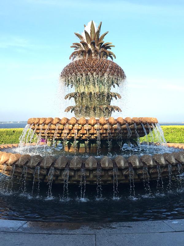 kiawah-35-charleston-pineapple