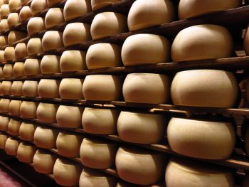 parmigiano-reggiano-15