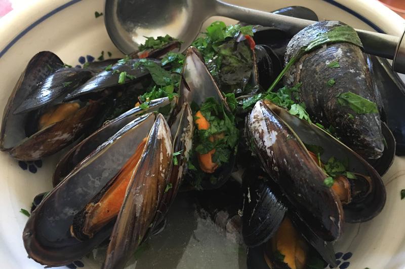salento-puglia-italy-mussels-cozze