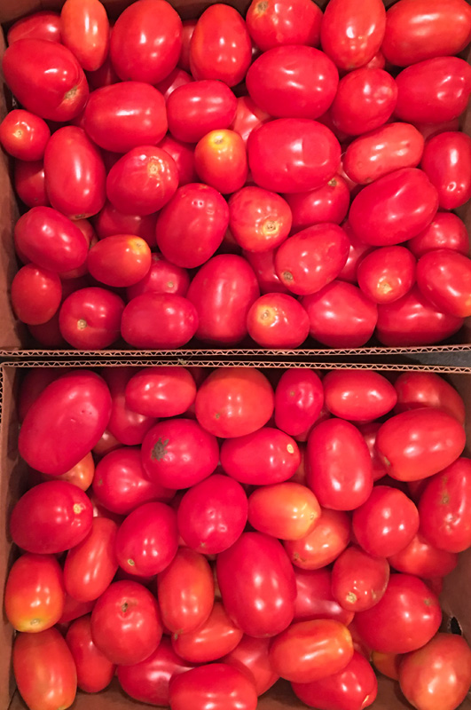 tomatoes-plum