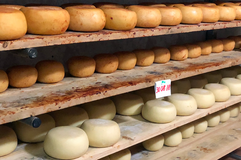 Tuscan Gastronomic Tour, Part 2: Cheese