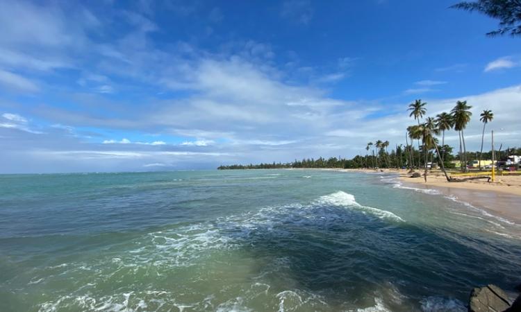 Food, Family and Feeling Boricua on La Isla del Encanto